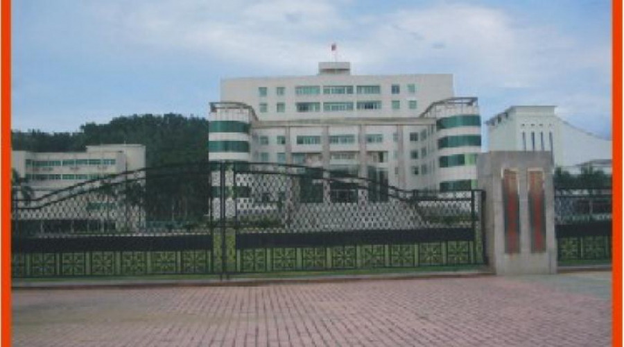 Shenzhen Longgang Town Government