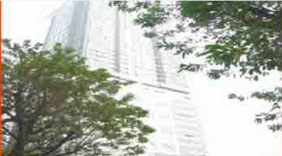 Guangdong Ruian Center